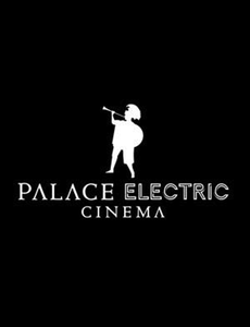 Palace Electric